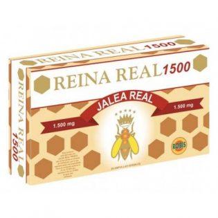 REINA REAL 1500 20 AMPOLLAS    en formato de 20 amp