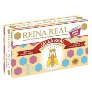 REINA REAL JUNIOR (INFANTIL) 20 AMPOLLAS    en formato de 20 amp